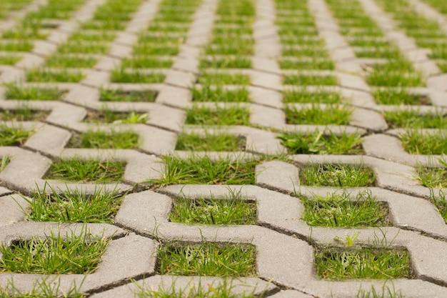 Зеленая трава прорастает сквозь булыжники в форме решетки в парке.