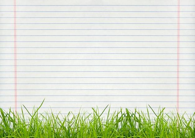 Изоляция зеленой травы на фоне страницы