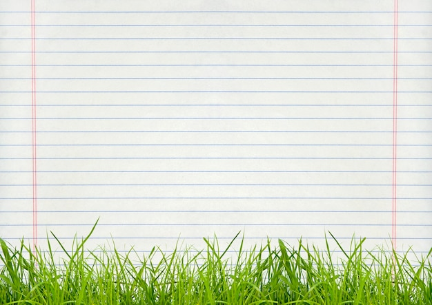 Green grass isolation on the page backgrounds