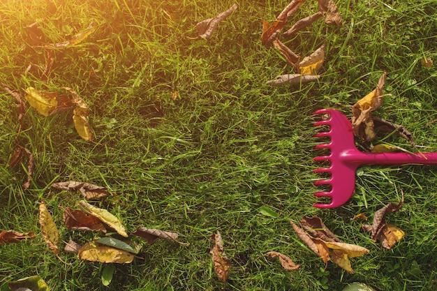 가 시즌에 갈퀴 빗자루가 있는 푸른 잔디 잔디. 농업, 원예 장비 개념입니다.