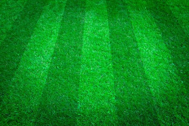 녹색 잔디 자연 배경입니다. 축구 필드. 평면도.
