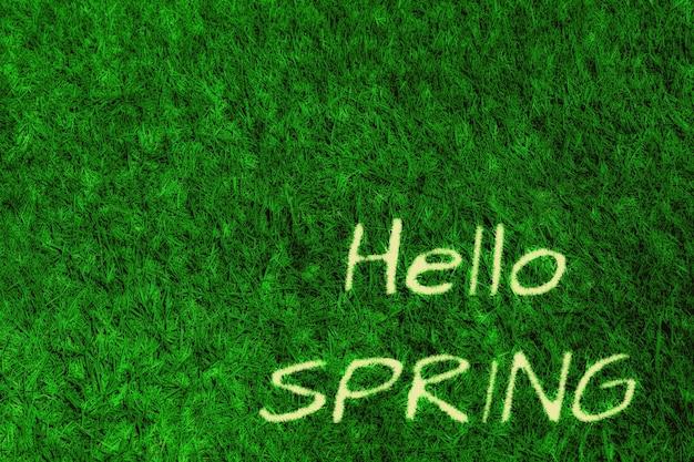 緑の草の自然な表面。こんにちは春
