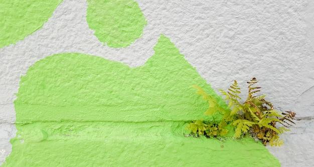 회색 콘크리트 벽 배경에 녹색 잔디, 고르지 않은 벽면 및 잔디, 배경 이미지.