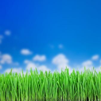緑の背景に緑の草