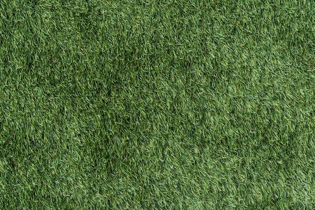 Картина и текстура зеленой травы для предпосылки.