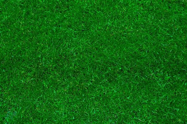 녹색 잔디 원활한 텍스처