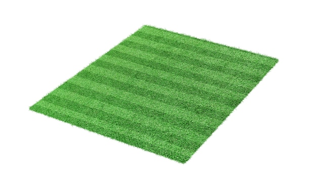 Green grass soccer, football field isolated on white background.