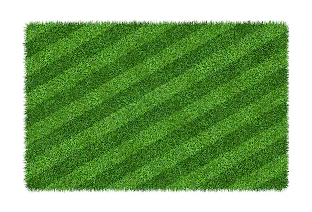 Green grass texture background for soccer and football sports. green grass field pattern and texture isolated on white background.