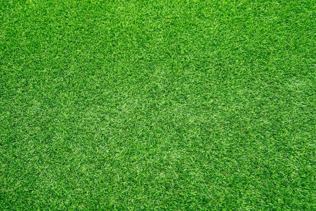 Зеленая трава текстуры фона вид сверху яркой травы сада идея концепции