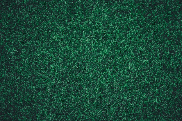 Green grass texture background.