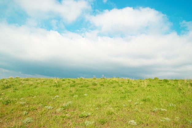 푸른 하늘과 구름과 푸른 잔디.