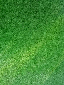 Green grass with sunlight. background texture.