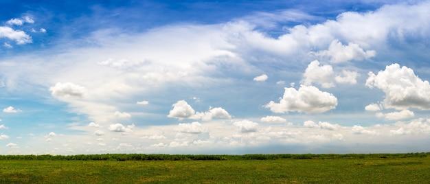 春の青空の背景に緑の草原