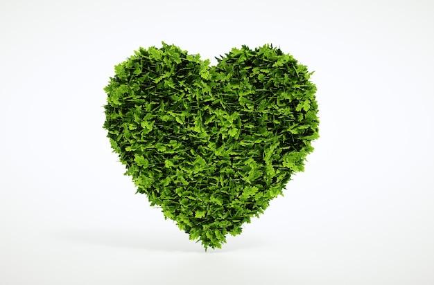 Зеленое сердце, изолированные на белом фоне. 3d иллюстрации.
