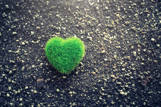 Green heart shape on soil manure love nature concept background.