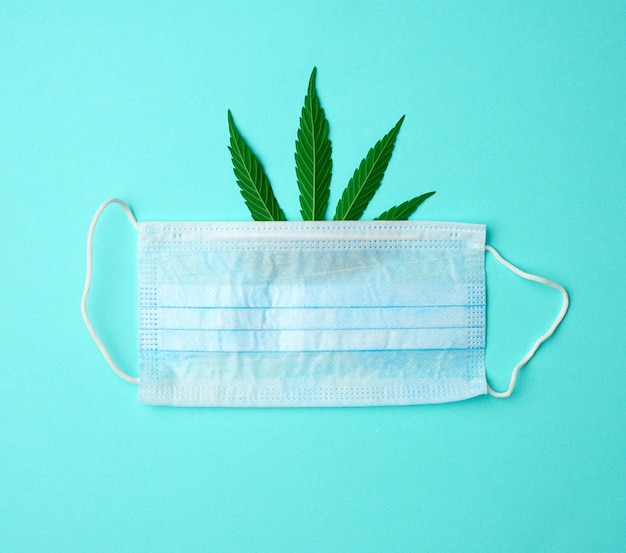 Green hemp leaf and disposable medical mask on a mint background