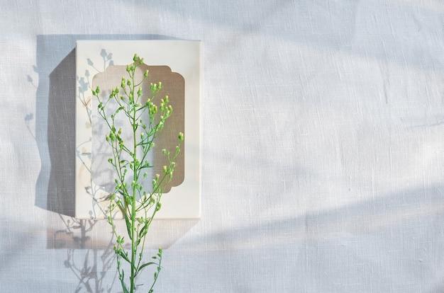 白い背景の上の白いフレームの緑の草本植物