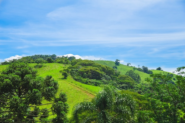 ブラジルの緑の丘の晴れた日と青い空