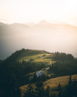 도로, 집, 나무가 있는 녹색 언덕
