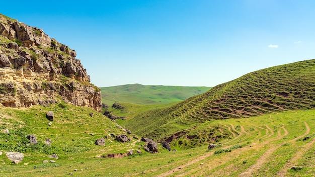 春の緑の丘と崖