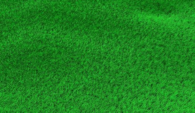 Green hilly lawn in small hummocks. 3d illustration