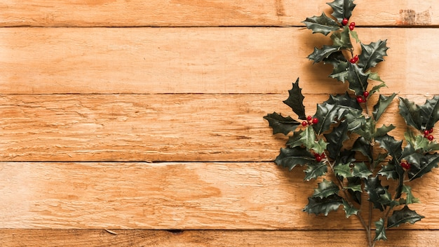 Green holly branches on wooden table