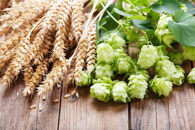 Зеленый хмель и колосья пшеницы на деревянном столе, вид сверху