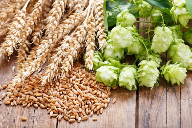 Зеленый хмель, колосья пшеницы и зерна на деревянном столе, вид сверху
