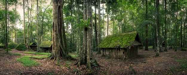 Green hut in forest