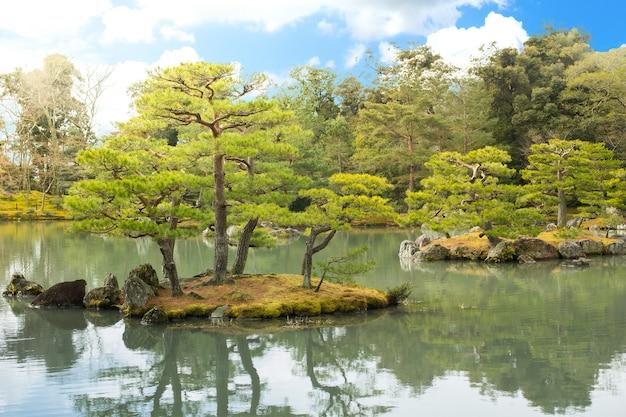 緑の日本庭園