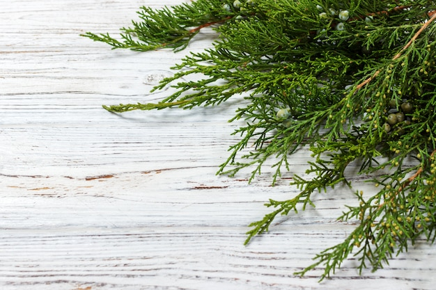 Green juniper twig with green cones lay on wooden table
