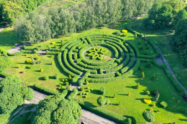 Green labyrinth in the botanical garden. labyrinth of hedges in the middle of a city park. an aerial shot.