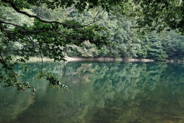 山の森の緑の湖。背景の旅行と冒険