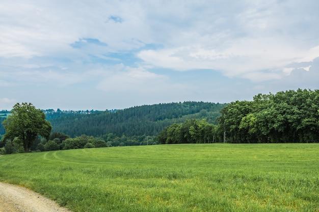 Зеленый пейзаж под голубым небом и белыми облаками