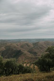 緑の木々と嵐の雲の下の山がたくさんある緑の風景