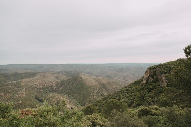 嵐の雲の下に緑の木々や山々がたくさんある緑の風景