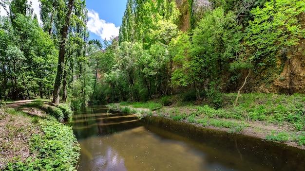 木々の間の小川、水と青い空の反射のある緑の風景。セプルベダ、セゴビア、スペイン、
