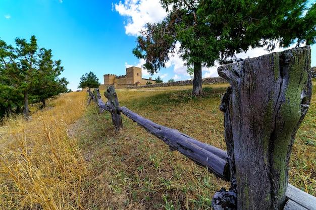 木製の柵、草の牧草地と木の森、雲と青い空と緑の風景。スペイン。