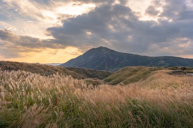 Зеленый пейзаж с фоном горы асо, кусасенри, асо, кумамото, кюсю, япония