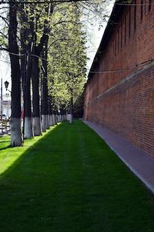 クレムリンの壁に沿った緑の芝生