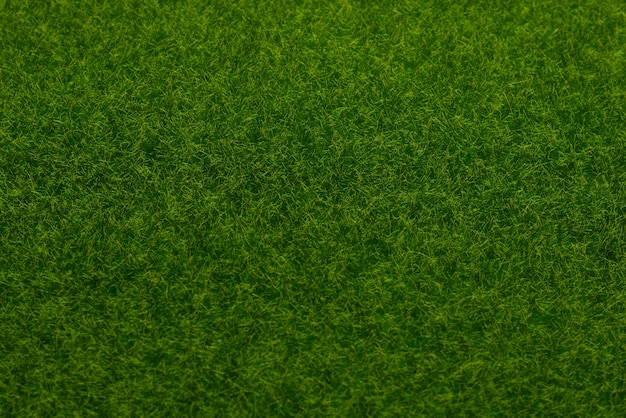 Зеленая предпосылка лужайки. зеленая трава, вид сверху.