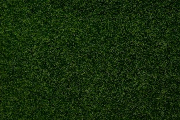 緑の芝生の背景上面図