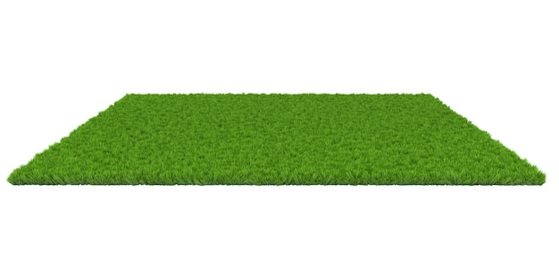 Green lawn on white background. 3d illustration