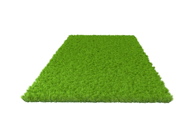 Green lawn on white surface isolated. 3d illustration