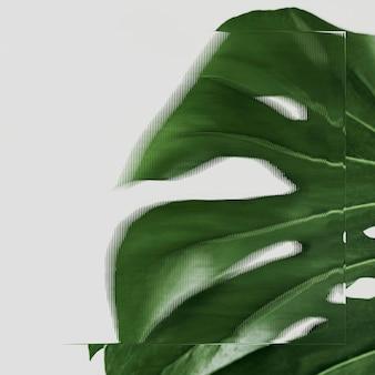 무늬가 있는 유리 질감이 있는 녹색 잎 배경