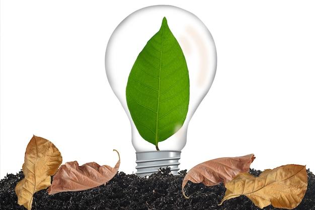 背景の電球で成長している緑の葉。
