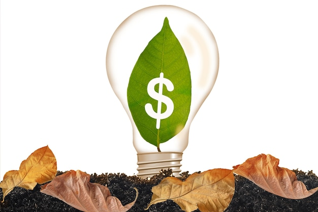 Green leaf growing in light bulb on background.