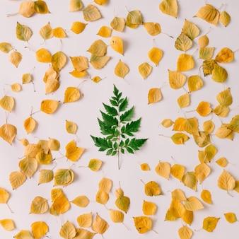가 벽에 크리스마스 트리 모양에 녹색 잎. 평평하다. 새 해 개념.