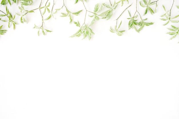白い背景の上の緑の葉のパターン。
