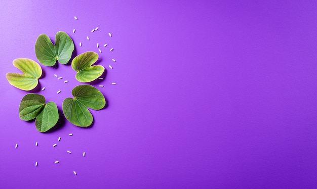Green leaf and rice on purple pastel background. dussehra indian festival concept.